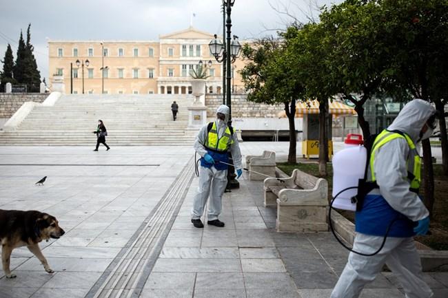 Външно: Вижте при какви условия можете да пътувате за Гърция