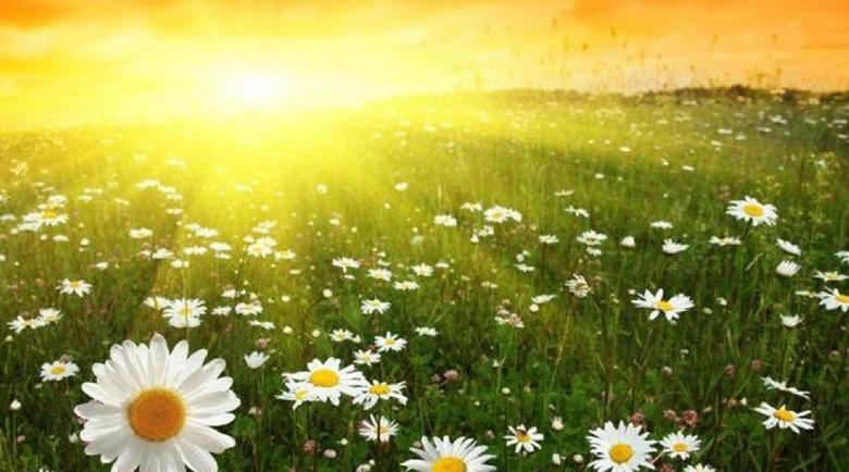 Слънчева и топла неделя, между 26 и 31 градуса