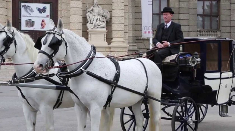 Файтони разнасят безплатна храна за пенсионери във Виена