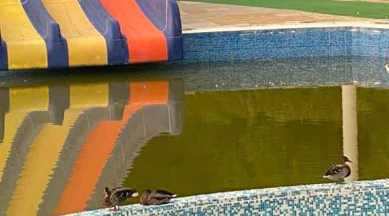 Съветници от БСП: Няма задкулисие по казуса с аквапарка