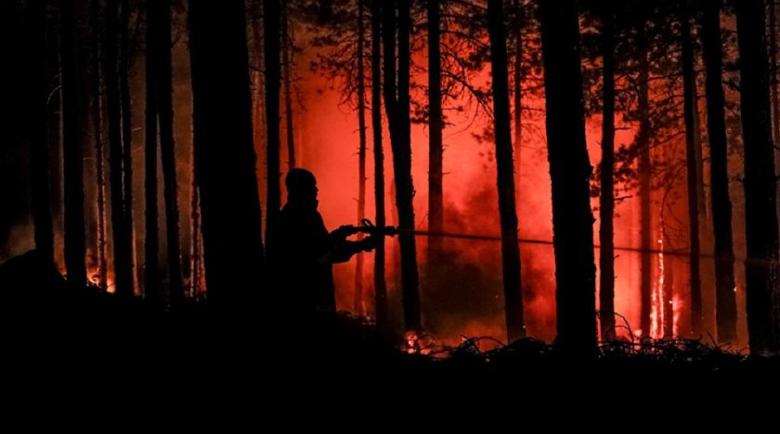 Голям пожар пламна край петрички села