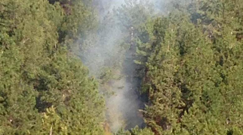 Овладян е пожарът в землището на село Обидим