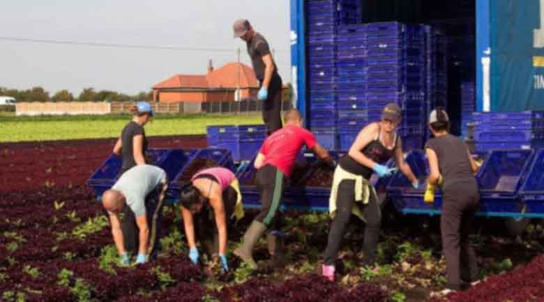 """""""The Economist"""": Българите вършат мръсната работа на европейците"""
