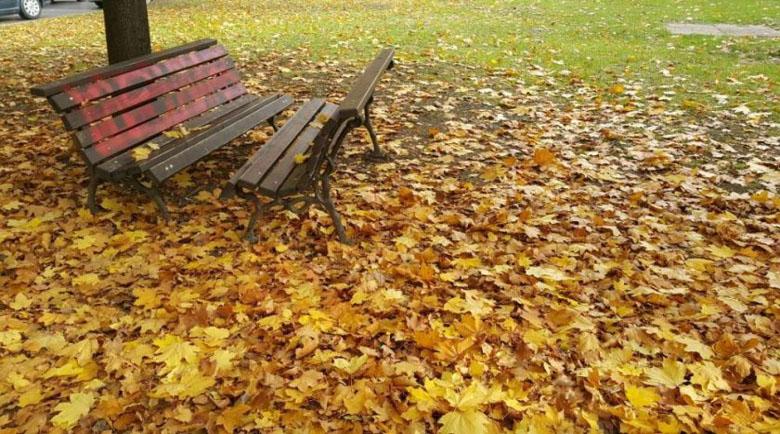 Есента дойде. 5 неща, без които губим късмета