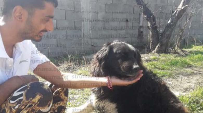 60 жители на Логодаж в акция да спасят селото от приюта за бездомни кучета