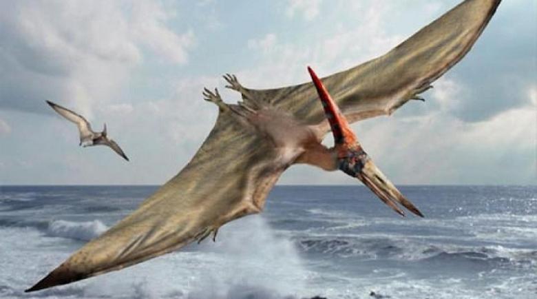 Откриха гигантски птерозавър в Трънско