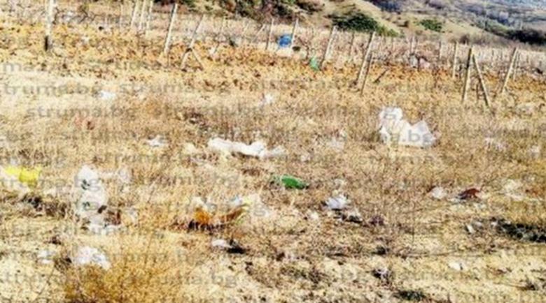 30 дка лозя край Сандански превърнати в сметище от камионите за боклука
