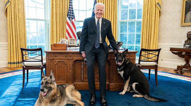 Кучетата на Байдън вън от Белия дом заради лай и хапане