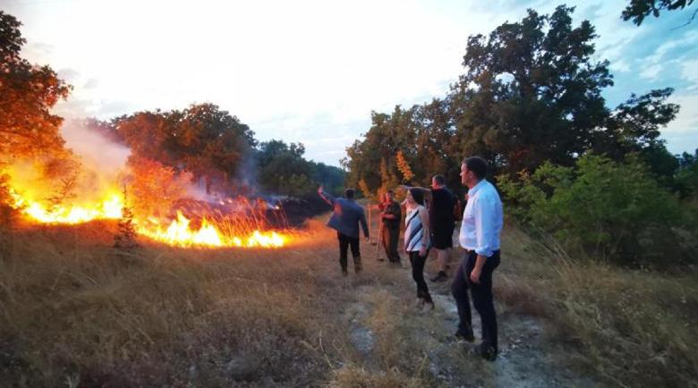 Свидетел на огнения ад: Горските бягаха, но пожарът ги прегърна
