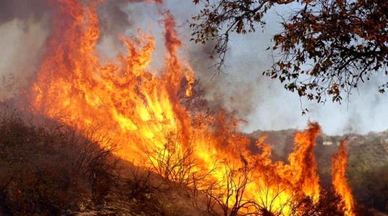 Пожар пламна в незаконно сметище над Благоевград